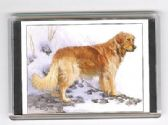 GOLDERN RETRIEVER LARGE FRIDGE MAGNET 2